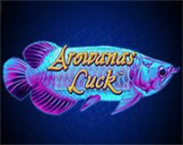Arowana`s Luck